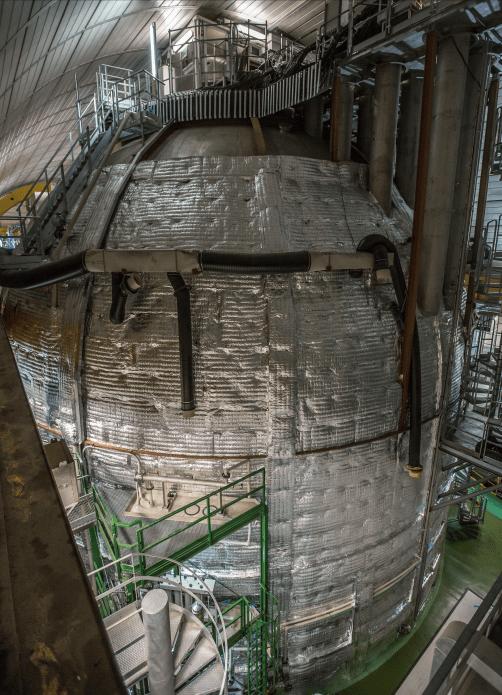 rivelatore borexino sole neutrini