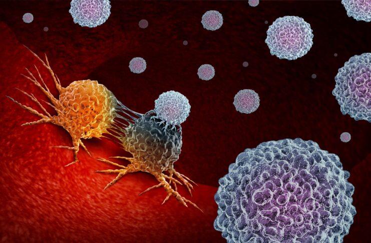 Ricercatori canadesi scoprono come le cellule tumorali diventano immortali