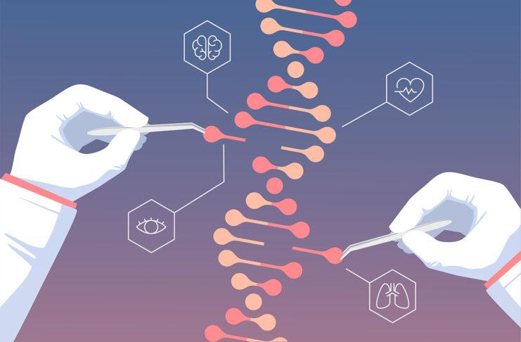È finalmente Nobel per la Chimica alle pioniere di CRISPR-Cas9