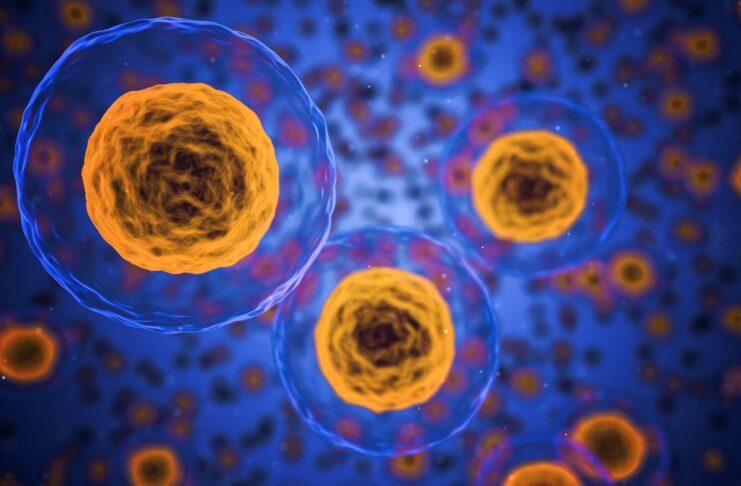 Nanotubi in oro per combattere il cancro da esposizione all'amianto