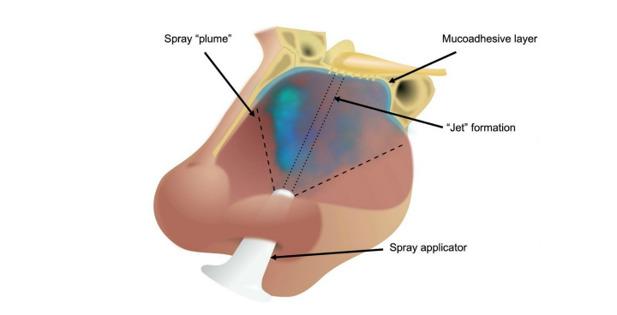Spray nasale covid coronavirus