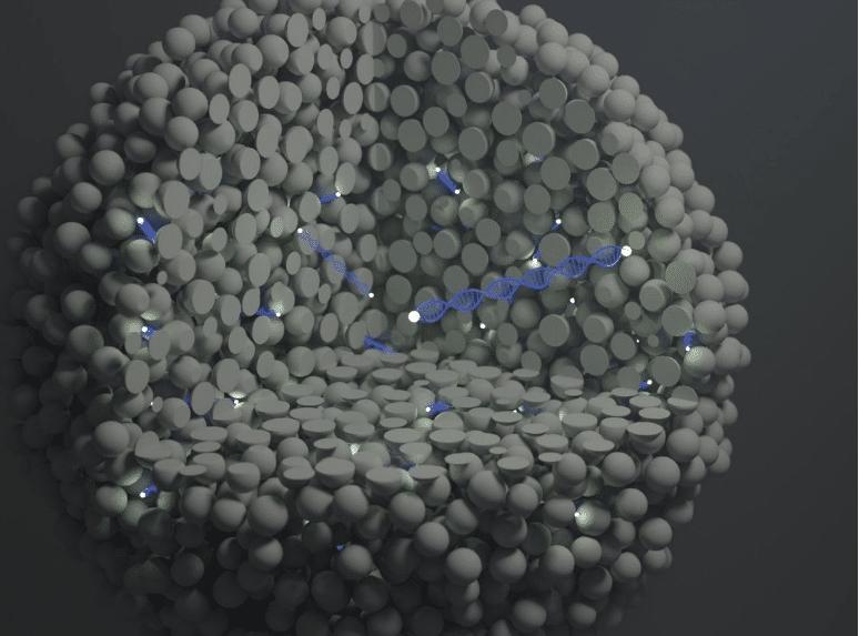 nano-sonda