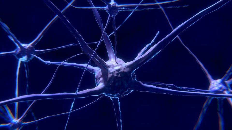 patologie neurodegenerative