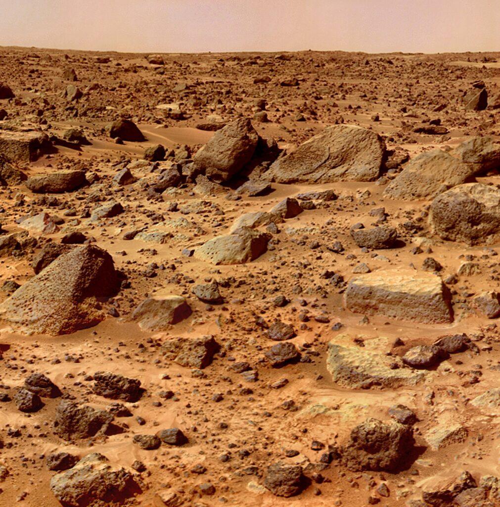 piante su Marte